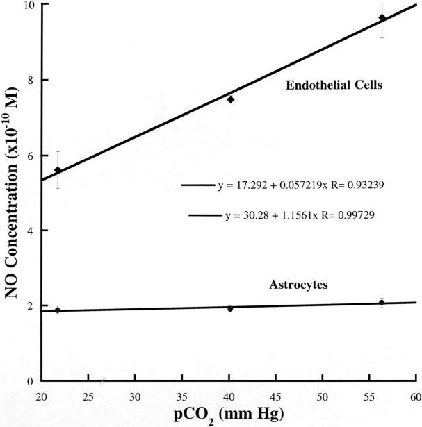 CO2 og NO øker blodsirkulasjon