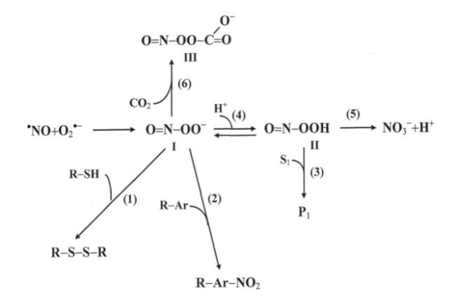 CO2 er en antioksidant