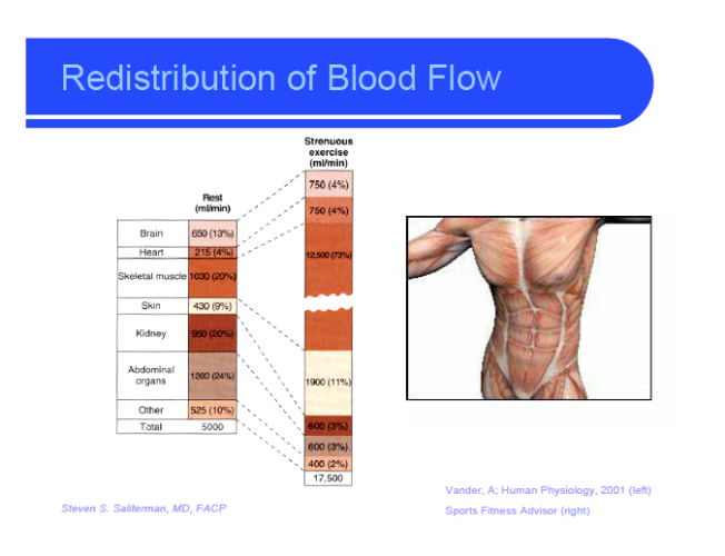 redistribution of blood flow